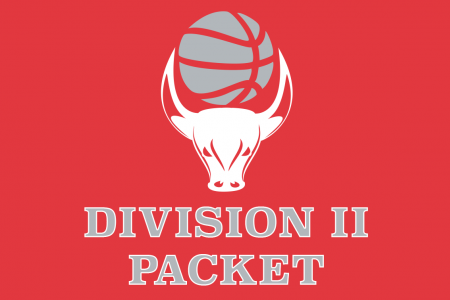 BasketBull Rise - Division II Packet